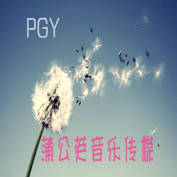 PGY音乐传媒